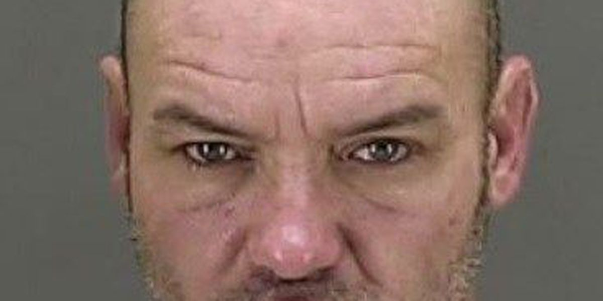 Police suspect Summit County man in 12 break-ins