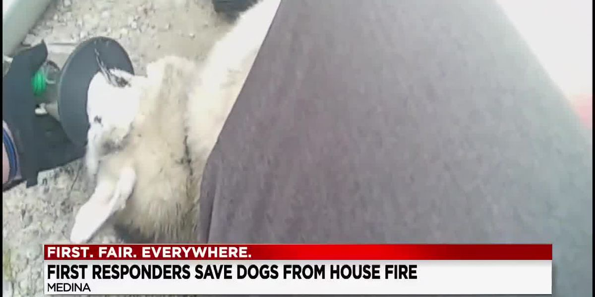 Medina first responders save 3 dogs trapped in house fire