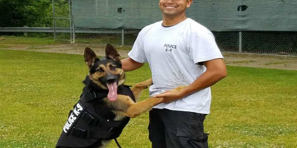 Rocky River K9s safe on the job, thanks to donation