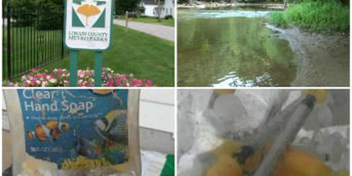Used hypodermic needles found by toddler at local park