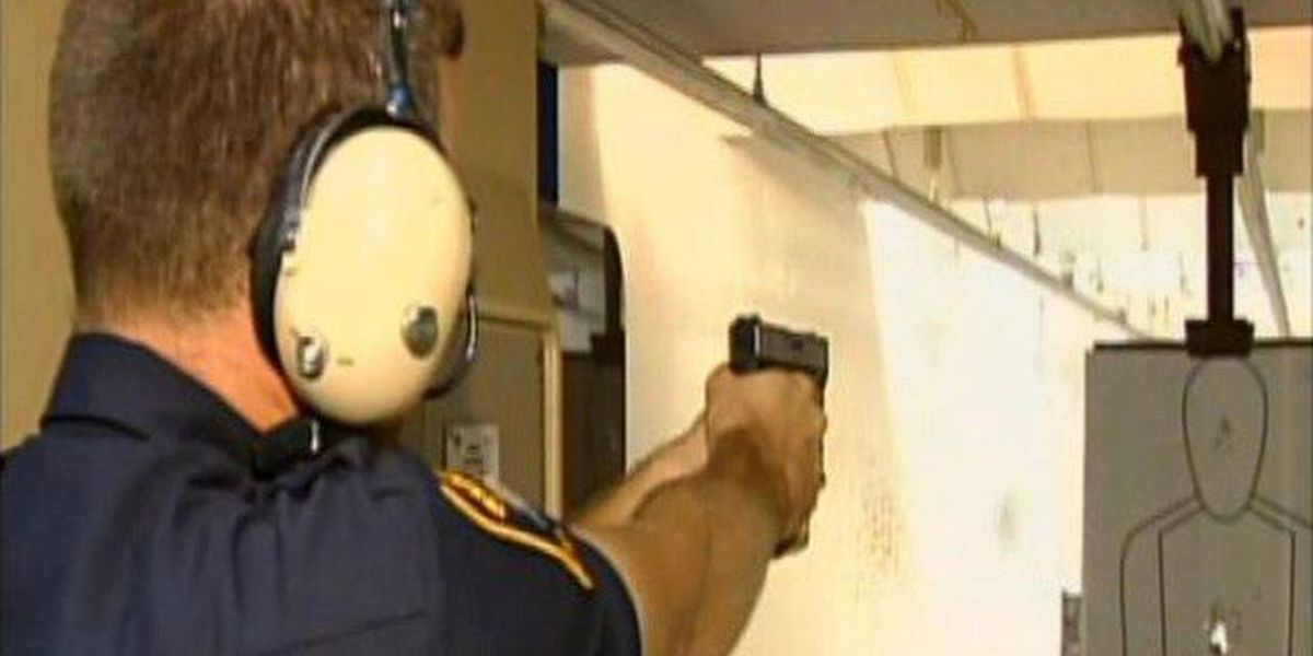 Proposed gun bill would eliminate permits, training, background checks