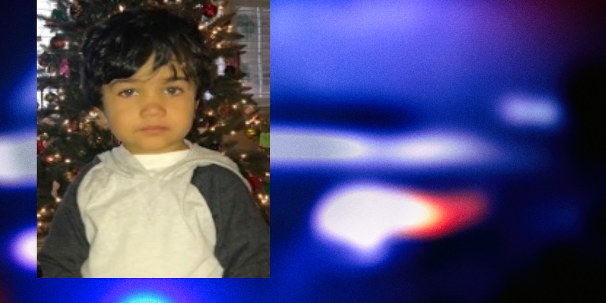 UPDATE: Missing 2-year-old Ohio boy found safe
