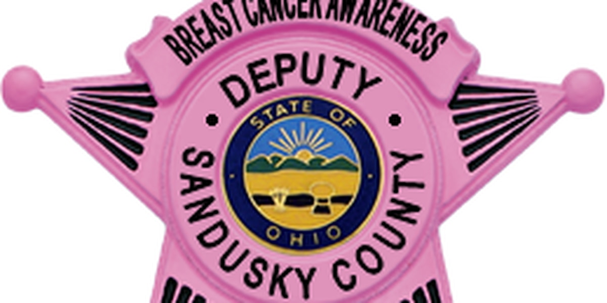 Police officers wearing pink for October Breast Cancer Awareness Month