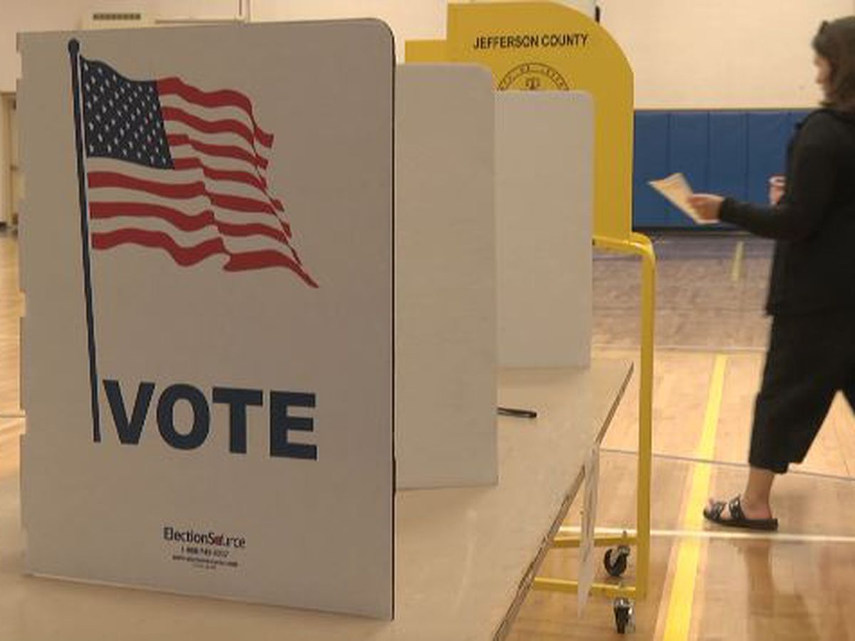 Elections chief narrows deletion of voter registrations