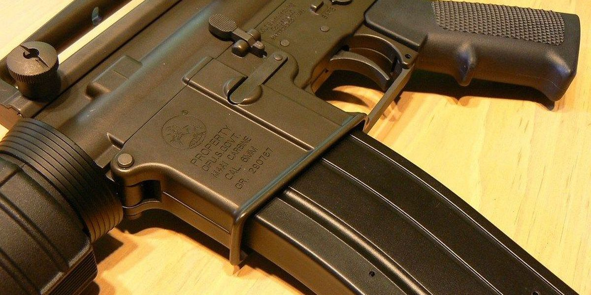Illinois town votes to ban assault weapons, fine violators $1,000 per day