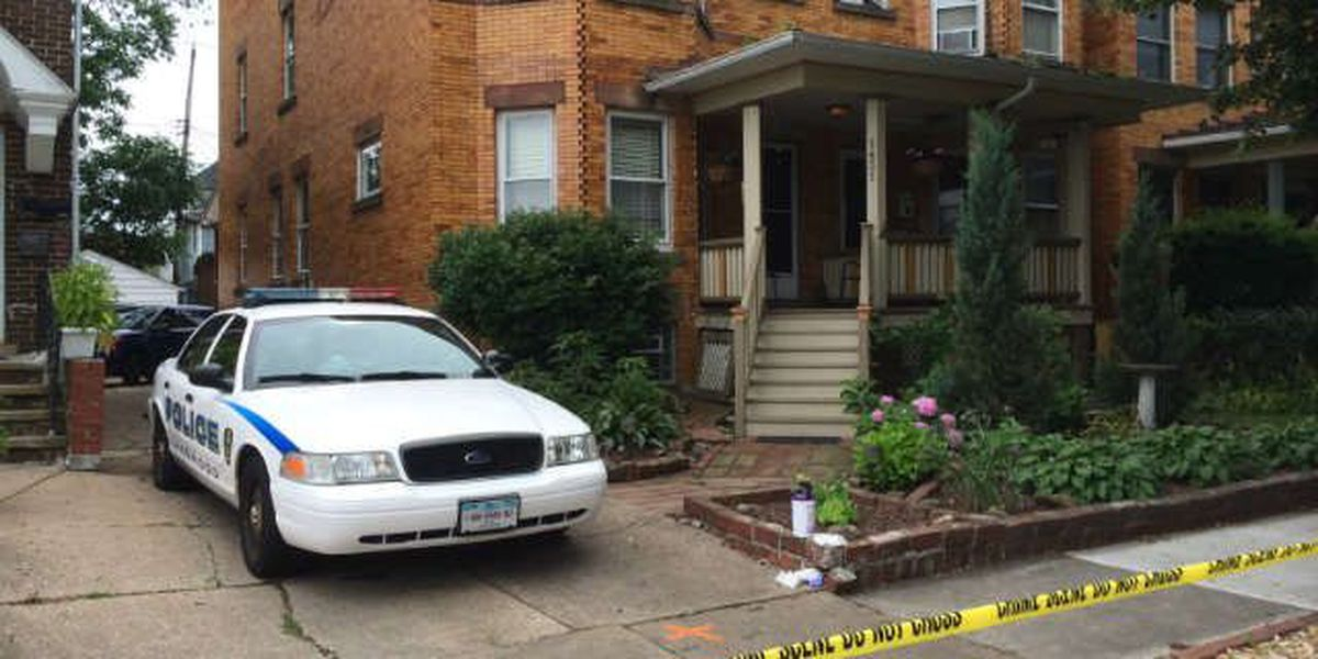 Son charged in mother's stabbing death