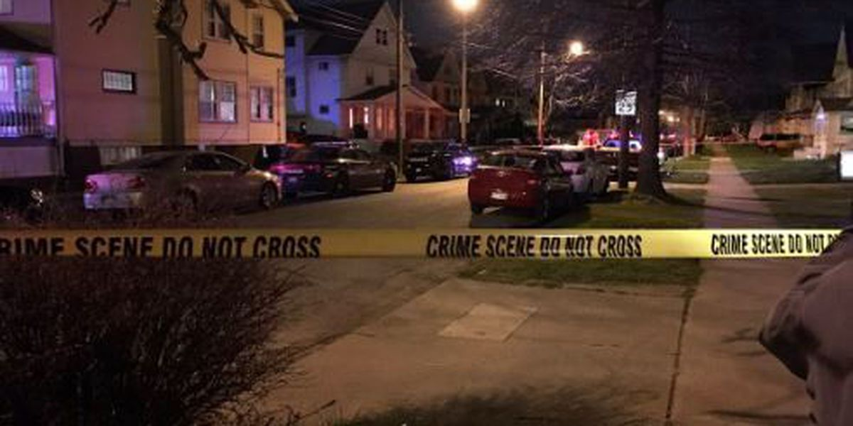 Police release names of investigators in officer-involved shooting on Mapledale Avenue
