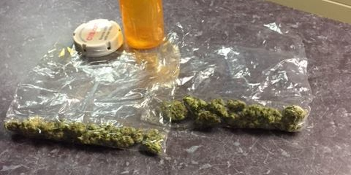 Willowick police looking for owner of lost pot