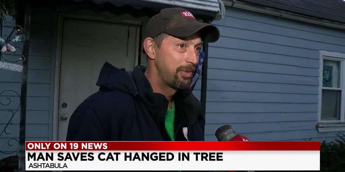 Ashtabula man cuts down cat he found hanging from tree