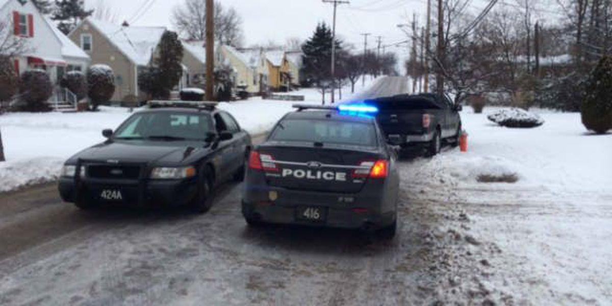 Driver flees after short police chase