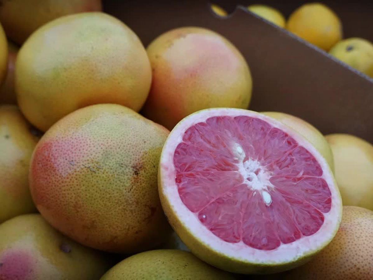 What is your favorite citrus fruit? The Taste Buds discuss the many health benefits of citrus