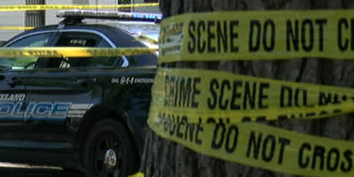 Man shot in the head in South Collinwood dies at hospital