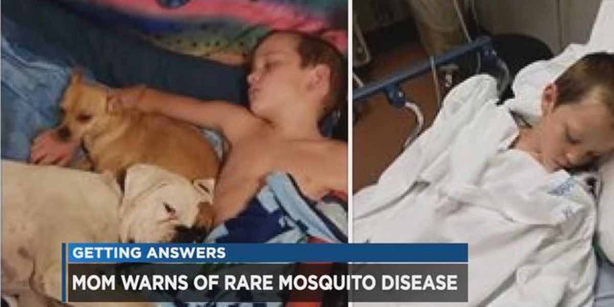 Boy contracts debilitating illness from mosquito; mother's warning goes viral