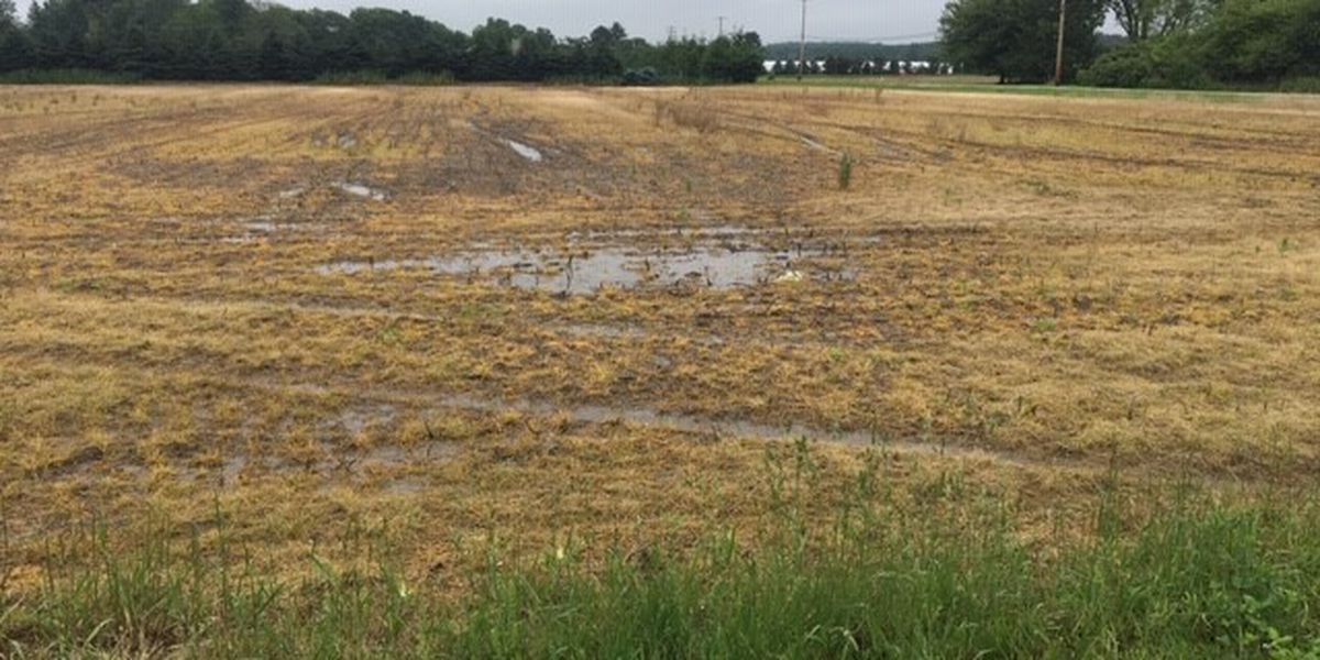 Ohio farmers fight tough conditions caused by wet weather
