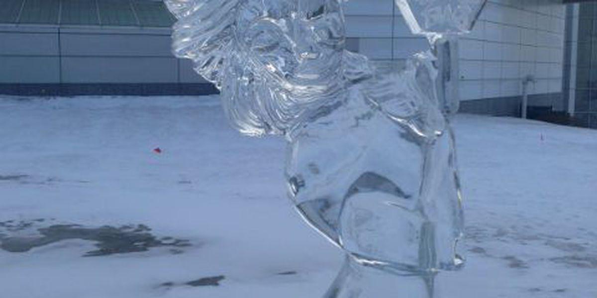Brutal Cold is Back, Oscar Winners, Frozen Niagara Falls