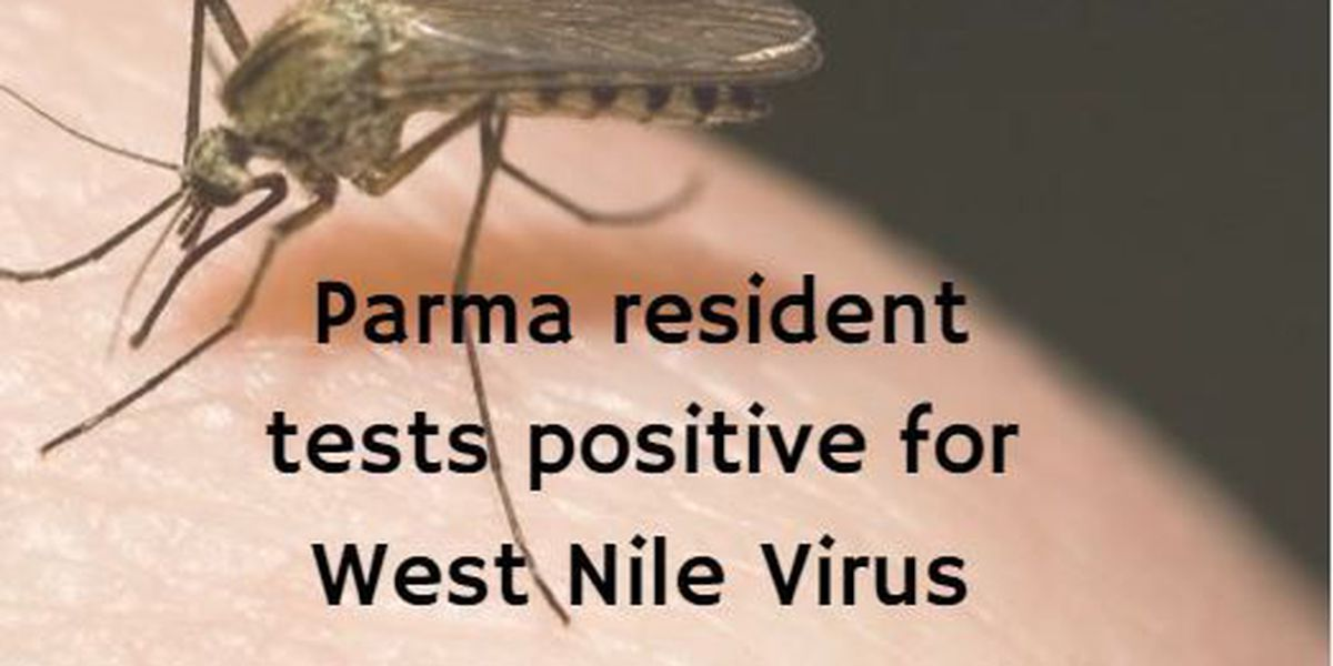 Parma resident tests positive for West Nile Virus