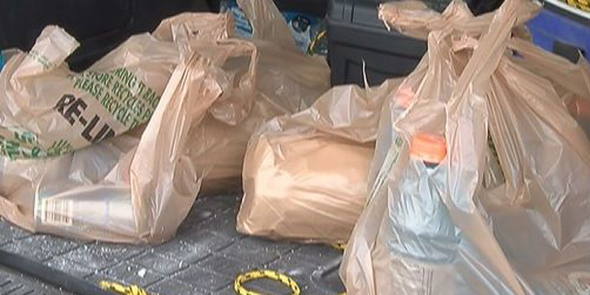 Bill banning plastic bag fees passed by Ohio House
