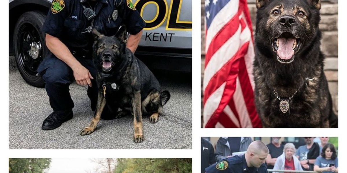 Kent Police Department dog 'K-9 Iron' retires after 5 years of service