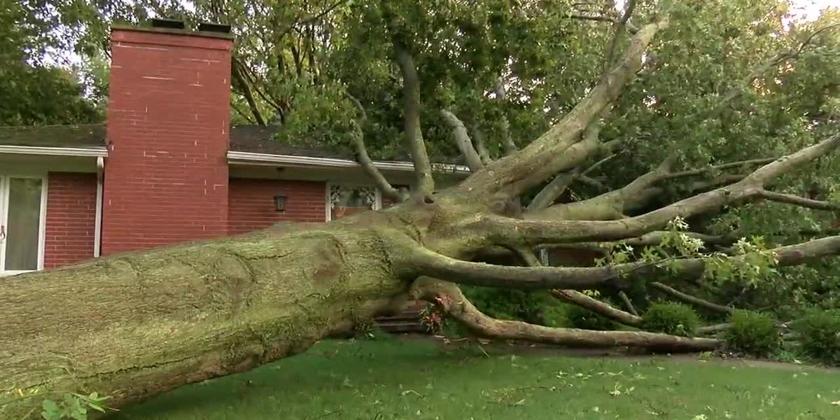 Cleanup underway in Kent following storms