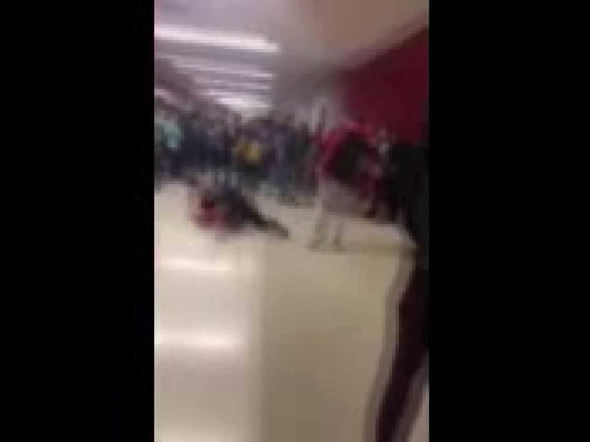 Fight at Wadsworth High School stopped by school resource officer