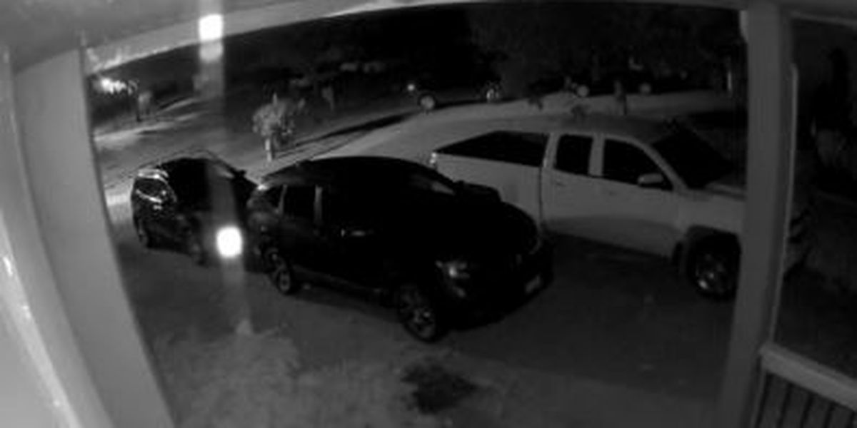 Willoughby police looking for the suspect caught on video trying to break into cars