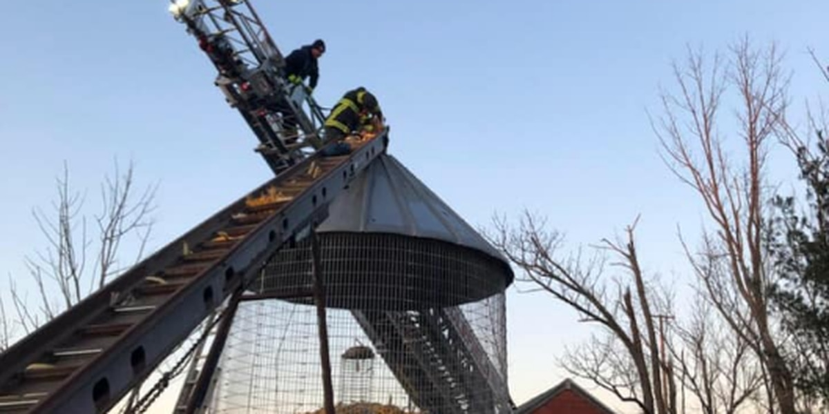Thompson man rescued after getting trapped in corn silo