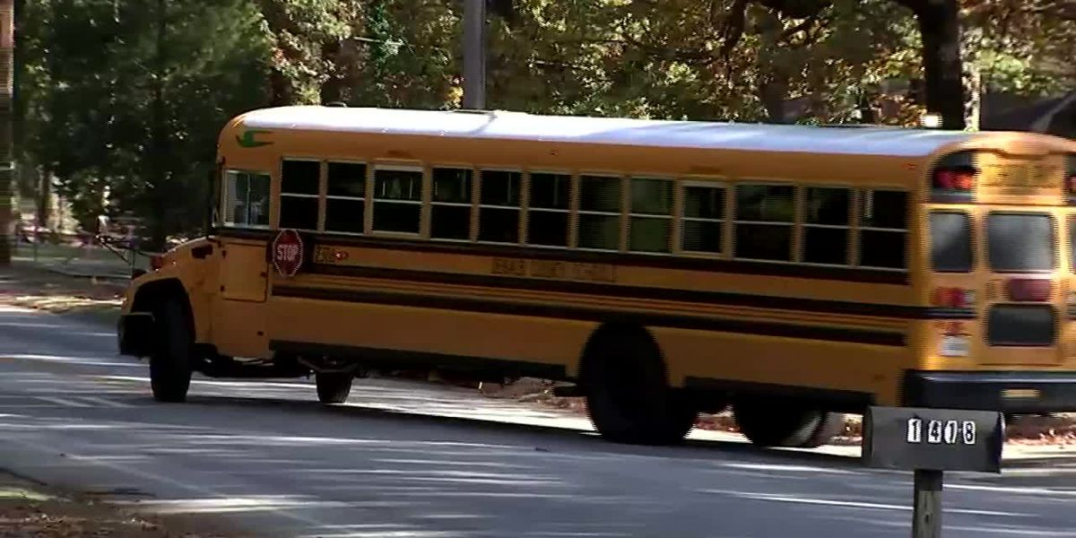 Mentor Police catch alarming amount of drivers passing school buses illegally after cameras installed