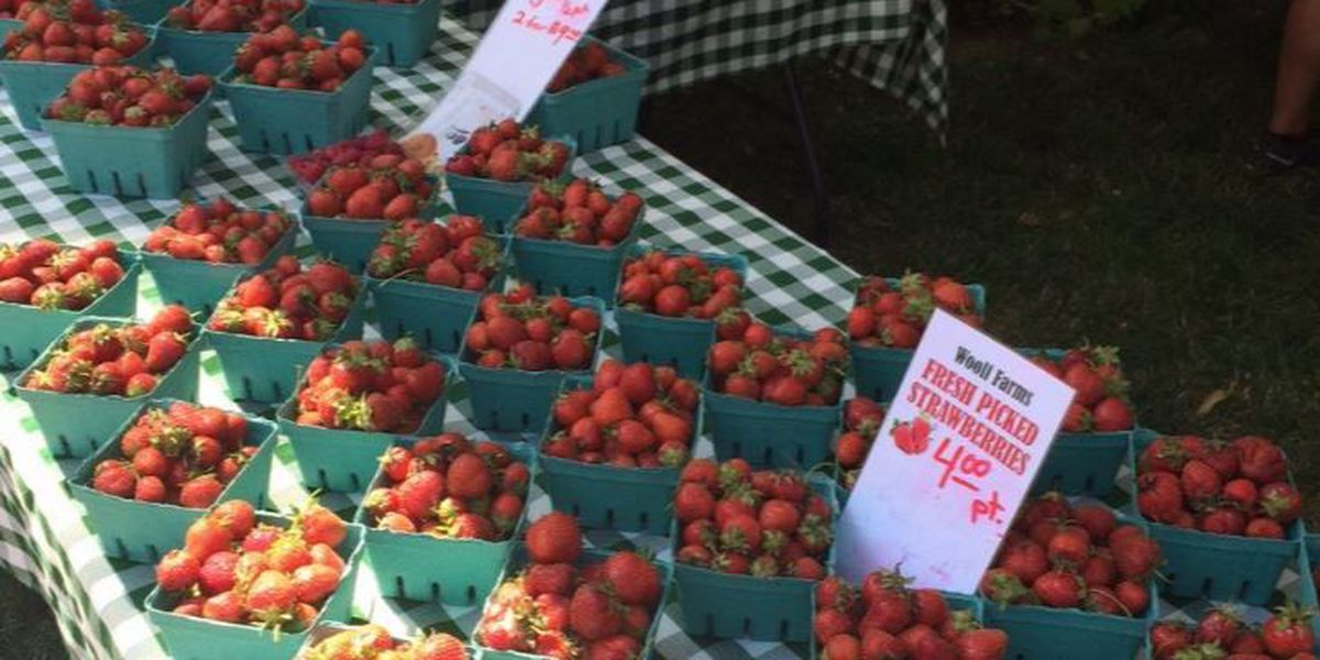 Where are the best farmers markets in Cleveland?