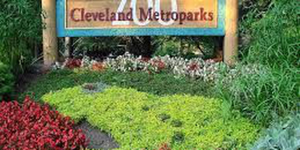 Cleveland Metroparks Job Fair touts seasonal opportunities for zoo, parks
