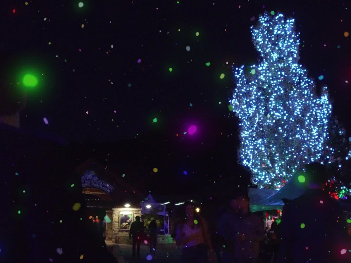 Wild Winter Lights returning Nov. 17 to Metroparks Zoo
