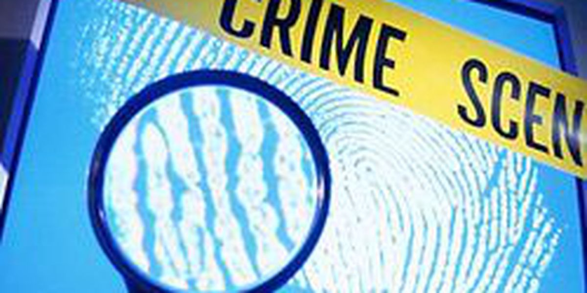 Police close case on attempted abduction, man mistook child for relative