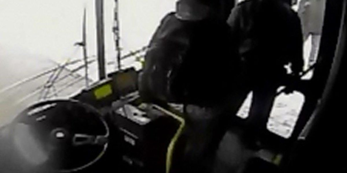 VIDEO: RTA bus driver gets into shoving match with passenger