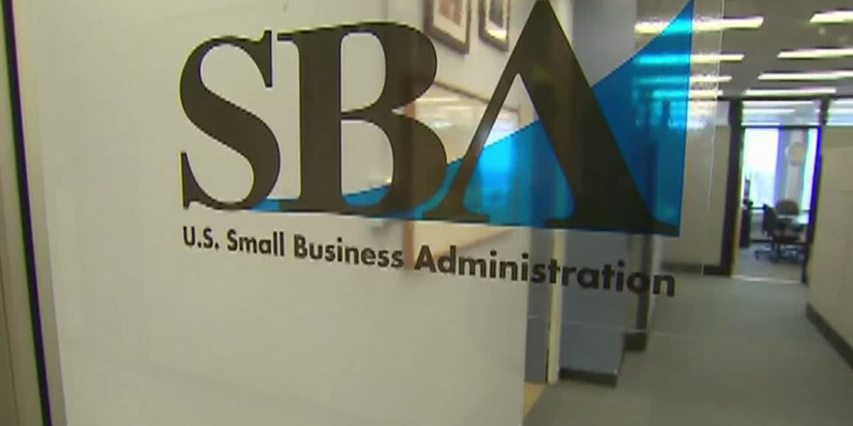 Small business loans rollout marred by glitches