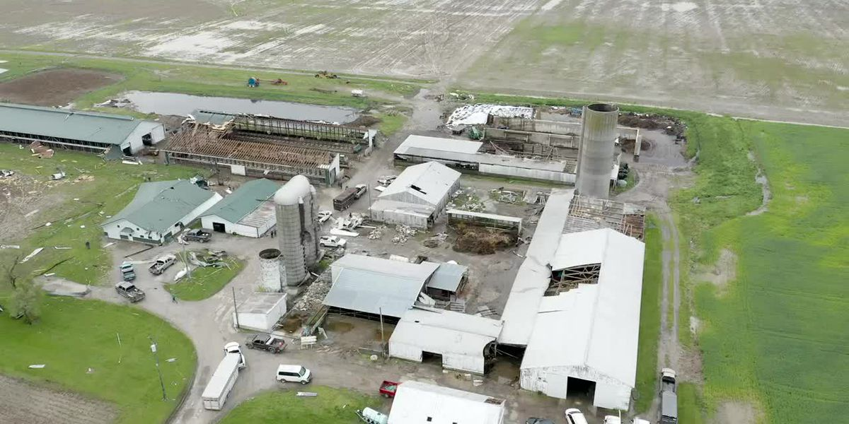 Ohio dairy barn destroyed by high winds as farmers were milking cows, trapping animals inside