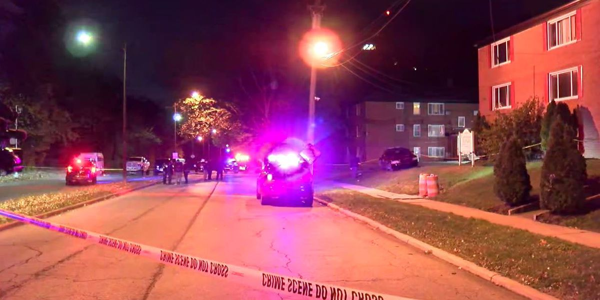 East Cleveland Police officers shoot and kill man who refused to drop gun pointed at woman's head