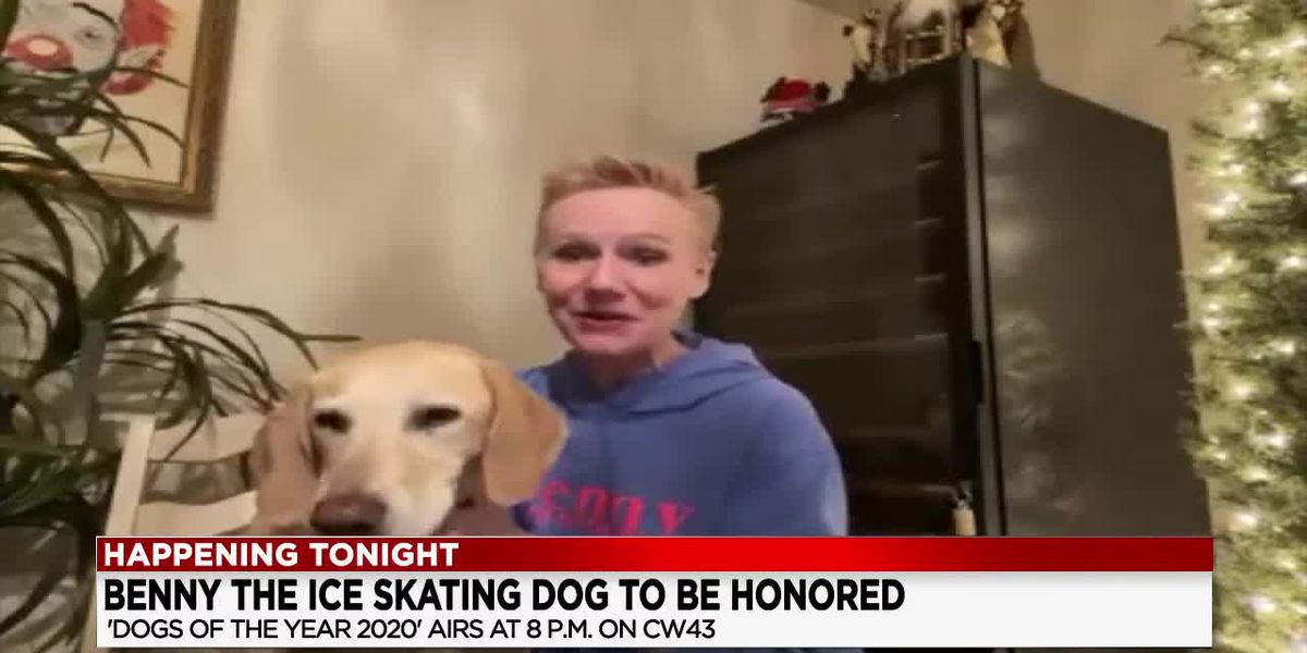 Top Dog: Benny the ice skating dog to be honored tonight