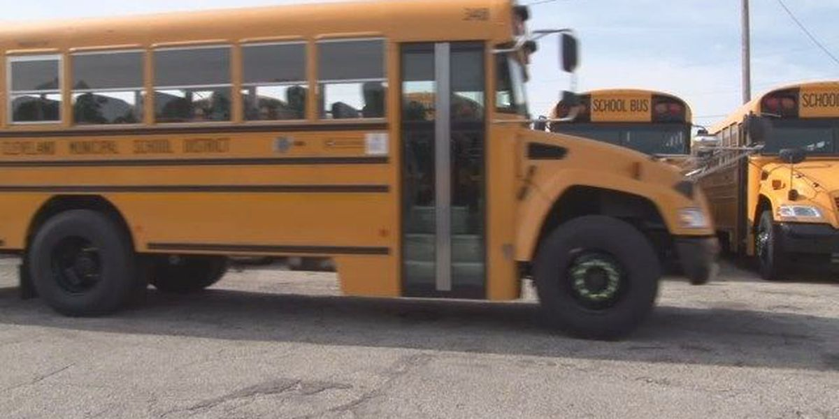 Ohio school bus laws: When to stop and when not to stop