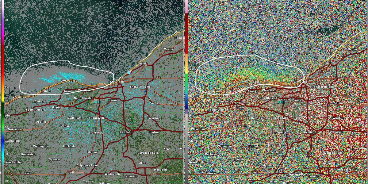 Swarms of midges on Cleveland's lakeshore are so dense they're showing up on weather radar