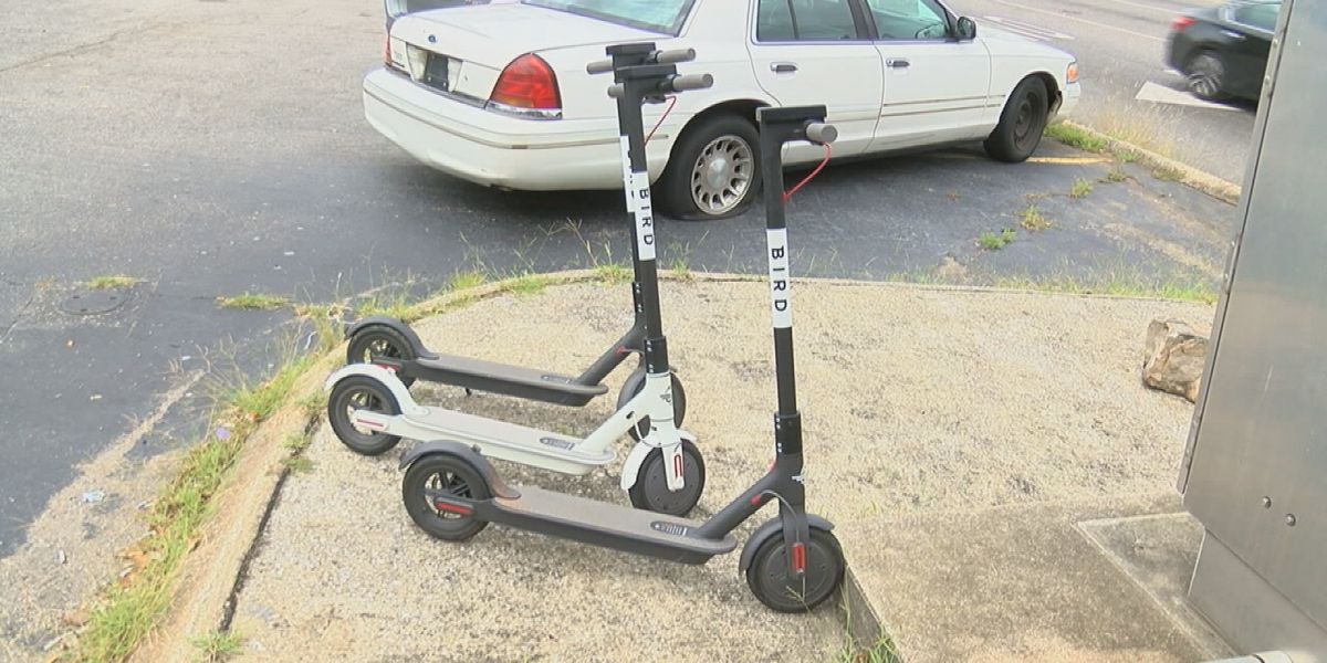 Electric scooters are back in Cleveland, but are riders following the rules?