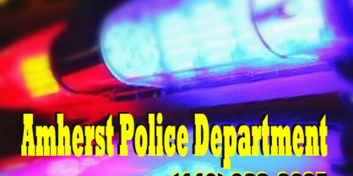 Amherst home struck with gunfire