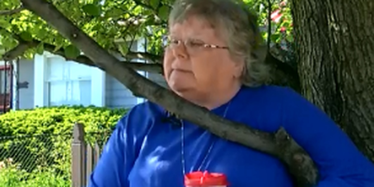 Woman says she'll tape herself to tree in Tremont to protest Cleveland's plan to chop it down