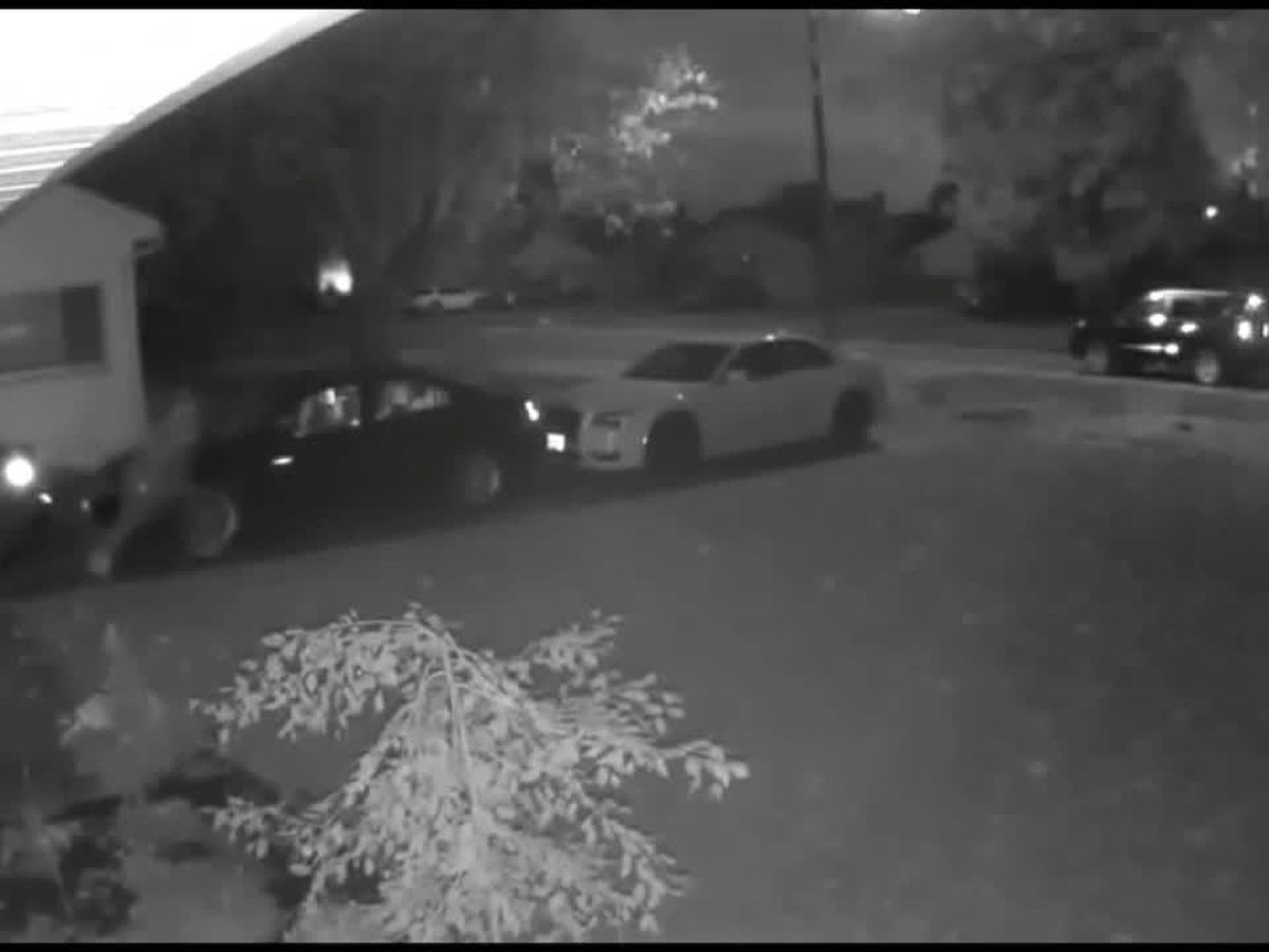 Video: Eastlake man startles crook in attempted overnight car theft