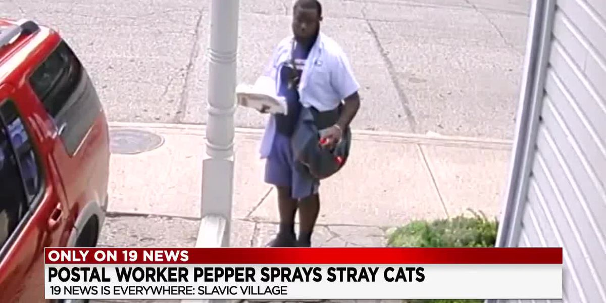 'We're sick and tired of people trying to harm animals': Slavic Village resident's response after USPS worker is caught on camera apparently pepper spraying stray cats