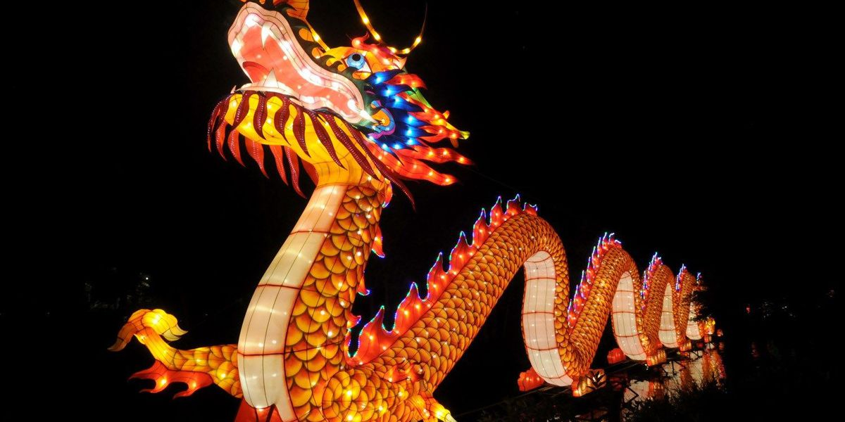 70,000 people have flocked to the Cleveland Zoo after hours to see the Asian Lanterns