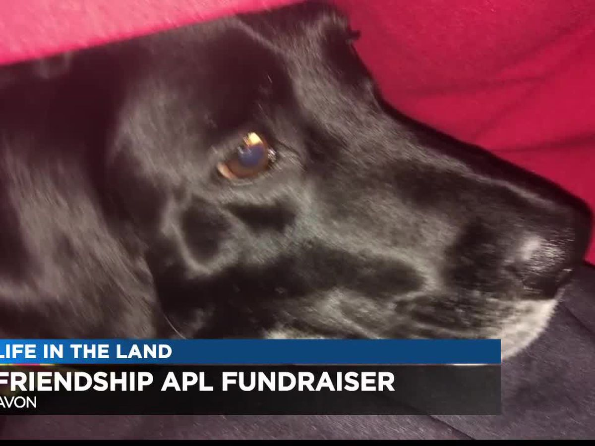 "Avon fundraiser for Friendship Animal Protective League helps pets go from ""Wags to Riches"""