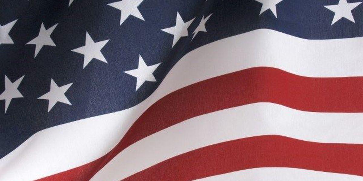 LOOK HERE: Veterans Day Freebies 2015