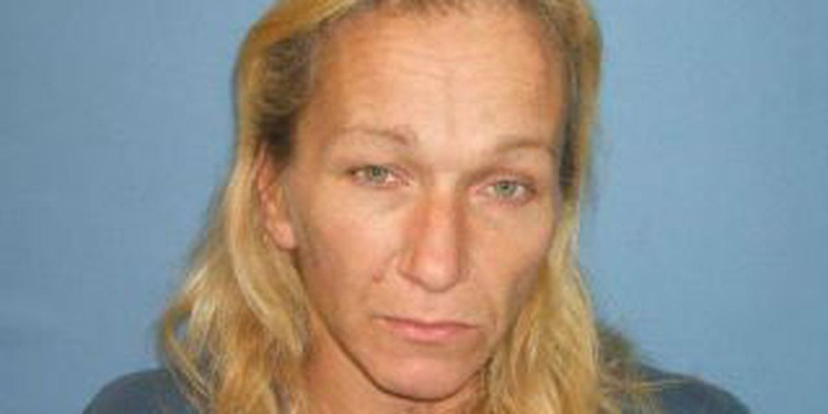 Eastlake police bust couple living in shed