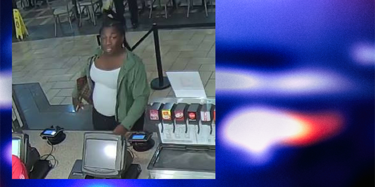 Mentor Police on the hunt for credit card fraud suspect