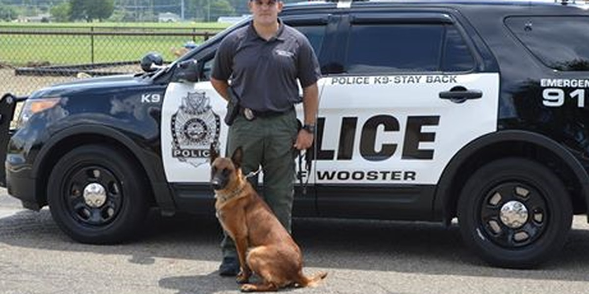 Wooster Police introduce new K9 Officer