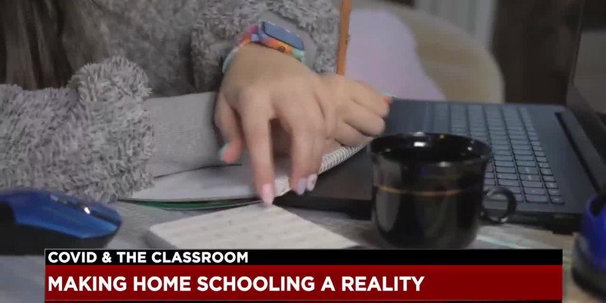 Homeschooling may grow in popularity as pandemic drags on